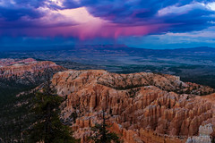 Into the Storm (Cramer Imaging) Tags: photo photography photograph outdoor outdoors nature natural national nationalpark brycecanyon brycecanyonnationalpark brycepoint sunset sky dramatic blue canyon pink dark americansouthwest utah tree trees hoodoo hoodoos orange cloud clouds color colors colorful scenic scenery rocks
