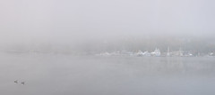 Westlake (garbazo) Tags: seattle westlake gasworks panorama fog mist nikon d7100 nikond7100 landscape lakeunion