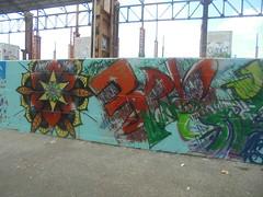 483 (en-ri) Tags: 3dn moas verde arancione fiore flower parco dora torino wall muro graffiti writing