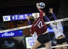 UW WA State-FT4I9857 (Pacific Northwest Volleyball Photography) Tags: volleyball ncaa womensvolleyball washington uwhuskies washingtonstate