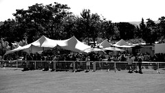 42409356 (asbcrugby) Tags: rugby fed1 asbccsv chapiteau tente monochrome noiretblanc bw personnes foule