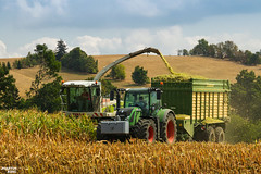 Corn Silage | CLAAS // FENDT // KRONE (martin_king.photo) Tags: mais corn cornsilage maisfeber 2018harvestseason summerwork powerfull martin king photo machines strong agricultural greatday great czechrepublic welovefarming agriculturalmachinery farm workday working modernagriculture landwirtschaft martinkingphoto machine machinery field huge big sky agriculture tschechische republik power dynastyphotography lukaskralphotocz day fans work place harvester forage clouds inaction action worker eos new weather flickr claas jaguar forageharvester fendt krone trees landscape fendtglobal fendtpower fendtvario fendtfans fendt700vario yesagco agco kronemx350gl silagewagon highlands