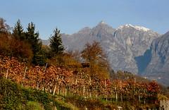 Val Camonica (annalisabianchetti) Tags: vallecamonica travel beautiful mountains montagne alps autumn autunno paesaggio landscape italy
