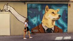 Caperucita (288/365) (Walimai.photo) Tags: grafitti salamanca street calle robado candid lx5 lumix panasonic color colour dog perro