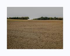 Biotope (hélène chantemerle) Tags: paysage champ bois terre labours ciel nuageux gris beige landscape field wood sky cloudy rural