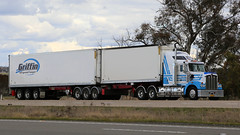 All- Nosed KENWORTHs (2/7) (Jungle Jack Movements (ferroequinologist)) Tags: yass nsw new south wales australia hume highway lachlan valley way transport cement hp horsepower big rig haulage freight cabover trucker drive carry delivery bulk lorry hgv wagon road nose semi trailer cargo vehicle load freighter ship motor engine power teamster truck tractor prime mover diesel driver cab beast wheel exhaust double b kenworth mcinerneys tumut prezisio morwell vic burkinshaws hervey bay qld atkins rutherglen cashmere hillston griffins refrigerated beddgoods thurgoona