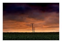 Comms | #landscape #suffolk #photography #sunrise #dawn #Blaxhall #telegraphpole #phoneline #powerlines #UK #maize #field #clouds #moody #sky #minimal #minimalist #nikon #simonthphotography (SimonTHGolfer) Tags: nikon landscape telegraphpole uk clouds photography powerlines minimalist sky blaxhall phoneline simonthphotography dawn suffolk minimal maize moody field sunrise
