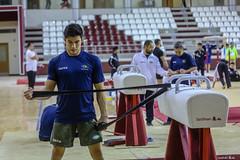 ginastica_doha_21out2018_treinomasc_abelardomendesjr-15 (Ministerio do Esporte) Tags: doha mundialdeginásticaartística qatar ginásticaartística