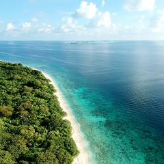 #djispark #Noonuatoll #manadhoobeach #manadhoo #millionaire #underwater #maldive #sun #holidays #adventure #millionairemindset #sonevajanimaldives #model #travelling #surf #diving (newview manadhoo) Tags: surf millionaire millionairemindset maldive manadhoo sonevajanimaldives holidays djispark manadhoobeach adventure diving travelling sun noonuatoll model underwater