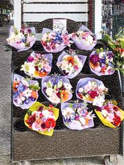 Mixed Flowers $20 (Steve Taylor (Photography)) Tags: mixed flowers 20 display stand florist bouquet digitalart newzealand nz southisland canterbury christchurch newbrighton flower texture