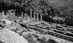 Delphi (Allan Jones Photographer) Tags: delphi ancientdelphi oracle mountparnassus mtparnassus temples classicalgreece mountains greece greek history historic travel tourism sightseeing mono pythia omens soothsayers monochrome bw blackandwhite iconic allanjonesphotographer canon5d3 canonef1635mmf4lisusm ancient columns trees