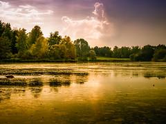 parklands, Parklandschaften (Klaus Lechten) Tags: dutzendteich parklandschaften landschaft parks grün natur pflanzen klauslechten teich weiher park gewässer lake sommer himmel wolken sigma816 nürnberg lechten sky blue clouds summer plants