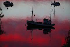 fishing boat (Leifskandsen) Tags: sunrise red boat fishigboat water coast norway sandvika camera canon living leifskandsen skandsenimages scandinavia skandsen sea scandinavien