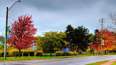 welcome to port dalhousie (Rex Montalban Photography) Tags: rexmontalbanphotography portdalhousie sign autumn fall