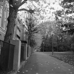 Arkivgatan (rotabaga) Tags: sverige sweden svartvitt göteborg gothenburg lomo lomography lubitel166 fomapan blackandwhite bw bwfp mediumformat mellanformat square 120 6x6 diy r09 twinlens