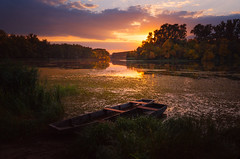 Together (Pásztor András) Tags: nature sunset boats water lake reed forest trees sky clouds blue yellow orange duck leafs autumn calmness fres colorful dslr nikon d5100 1870mm hungary andras pasztor photography 2017