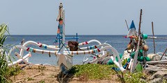 Beached as (A Different Perspective) Tags: amed bali beach boat colour fishing wood