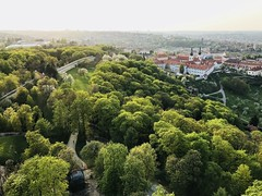 Sping evening view from the Petrin Lookout Tower (Pavel's Snapshots) Tags: trees fresh prague praha czech czechrepublic capital petrin observation lookout tower gardens lovely spring evening green monastery sunlight bright romantic old historical ancient oldtown travel tourism tour aerial panorama height distant hills beautiful nature landscape sunny haze vivid filter iphone mobile phone strahov outside