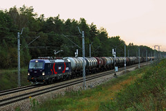 193-807 (Andrzej Szafoni) Tags: 193 193807 vectron siemens train railroad electric locomotive lotoskolej lotos poland polska