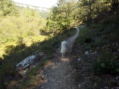 Senderismo por Canon del Ebro Burgos  15 Septiembre 2018 Fotografia Luisa  Marciel (8)