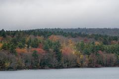 quabbinreservoir2018-133 (gtxjimmy) Tags: nikond7500 nikon d7500 quabbinreservoir newengland massachusetts belchertown ware autumn fall reservoir quabbin