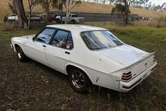 1979 Holden HZ GTS (jeremyg3030) Tags: 1979 holden hz gts cars australian musclecar monaro
