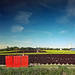 Salades, Saintes-Gemmes-sur-Loire, France