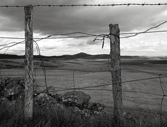 Barrier (megalithicmatt) Tags: elrick cabrach blackmiddens meiklecairn bw xtol bronicags1 fence wires barbedwire taponoth zenzanonpg50mmf45