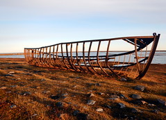Arctic rusty shipwreck in autumn colours (subarcticmike) Tags: arctic subarcticmike arviat nunavut tourism ship bones hull geotagged