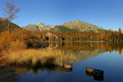 Autumn time 1 (tatranka7) Tags: landscape mountain lake tarn autumn colors water scenery mirror reflections panorama tree trees forest