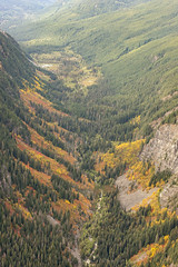 Valley East of Bald Eagle Peak (Scott_Nelson) Tags: skykomish washington unitedstates us cascades cascadesfromtheair cascademountians mountains autumn fall fallcolors