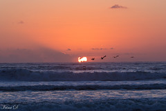 Begining of a new day (Irina1010) Tags: sunrise light colors sun sky birds flying ocean waves parallellines morning beautiful moment october 2018 saintaugustine coth5 ngc outstandingromanianphotographers