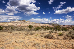 Taking the Long View (daveanderson14) Tags: approved landscape sky clouds newmexico