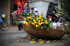 _BOS0496 (Roaming Rabbit Tales) Tags: hanoi roses flowers flowerbasket streetvendor vietnam