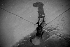 Rain Protected (CoolMcFlash) Tags: rain street streetphotography candid umbrella person walking bnw bw blackandwhite monochrome regen strase regenschirm gehen citylife sw schwarzweis fotografie photography canon eos 60d tamron b008 18270 reflection wet nas spiegelung