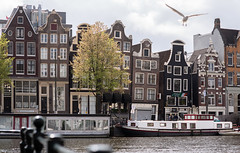 (angheloflores) Tags: amsterdam canal houses amstel architecture travel urban explore city netherlands 85mm