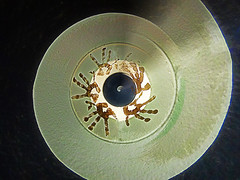 Jazz Hands (Steve Taylor (Photography)) Tags: record jazz hands digitalart brown black green contrast newzealand nz southisland canterbury christchurch newbrighton distorted