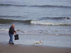 Beach Buddies (Glass Horse 2017) Tags: redcarandcleveland beach seafront shore waves sea walkies dog bouncing running beachbuddies shoppingbag