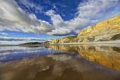 Monkey man (pauldunn52) Tags: traeth mawr glamorgan heritage coast wales wet sand cliffs reflection