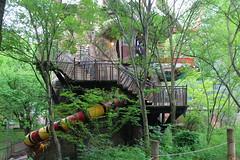 Cleveland Metroparks Zoo - Cleveland, Ohio (FitchDnld) Tags: yagga yaggatree cleveland clevelandohio clevelandmetroparkszoo clevelandzoo clevelandmetroparks ohio ohiozoo metroparks zoo