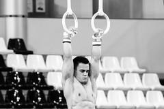 ginastica_doha_21out2018_treinomasc_abelardomendesjr-19 (Ministerio do Esporte) Tags: doha mundialdeginásticaartística qatar ginásticaartística