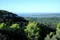 vue de l'étang de Thau, d'Agde et des Pyrénées depuis l'abbaye de Saint Felix de Monceau (guy dhotel) Tags: paysage landscape étang montagne ciel bleu arbres blue sky montains pond