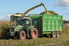 Krone Big X 630 SPFH filling a Broughan Engineering Mega HiSpeed Trailer drawn by a Fendt 716 Vario Tractor (Shane Casey CK25) Tags: krone big x 630 spfh filling broughan engineering mega hispeed trailer drawn fendt vario tractor 716 agco green rathcormac traktor traktori tracteur trekker trator tillage ciągnik silage silage18 silage2018 maize maize18 maize2018 winter feed fodder county cork ireland irish farm farmer farming agri agriculture contractor field ground soil earth cows cattle work working horse power horsepower hp pull pulling cut cutting crop lifting machine machinery nikon d7200
