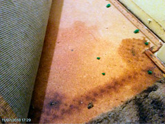 SERVPRO-Mold-Fire-Smoke-Soot-Ash-Water-Damage-Mold-Biohazard-Cleaning-Restoration-Company-Redding-California-Photos-18 (SERVPRONorthShasta) Tags: servpro california redding fire water storm mold shastacounty