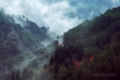 En Cévennes (Bob Guedin) Tags: brume cevennes parc national des