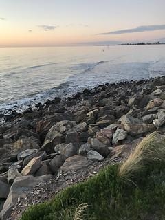 marion coastal walking trail-33