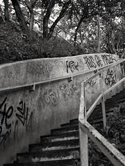 (lilalala88) Tags: bw stairs