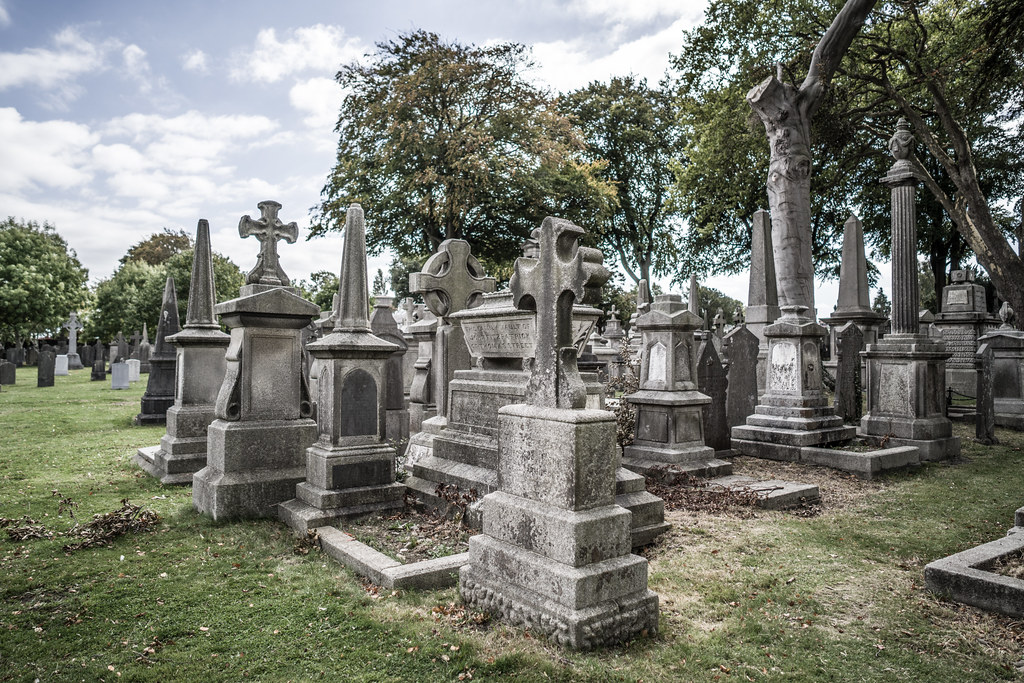 SEPTEMBER 2018 VISIT TO GLASNEVIN CEMETERY [ I USED A BATIS 25mm LENS AND I EXPERIMENTED WITH CAPTURE ONE]-144790