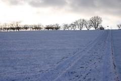 Bleak Midwinter (Rail and Landscapes) Tags: ossett