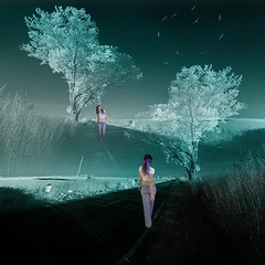 crossroads (old&timer) Tags: background infrared filtereffect composite surreal song4u oldtimer imagery digitalart laszlolocsei